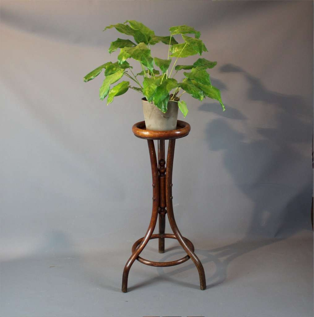 Bentwood plant stand by Fischel