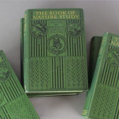 Set of six books with arts and crafts covers
