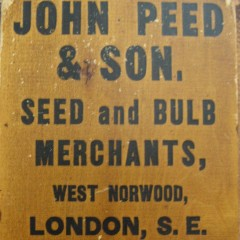 Large old wooden thermometer advertising John Peed seeds